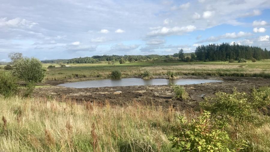 Så fik vi vores sø oprenset